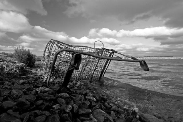 Shopping Cart Ocean